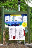 Mz_hotaru2012a