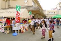 Shinonomefes2012g