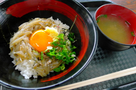 Akafujidon03
