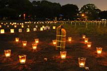 Candlefuji2012i
