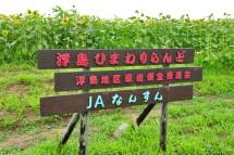 Uki_himawari2012e