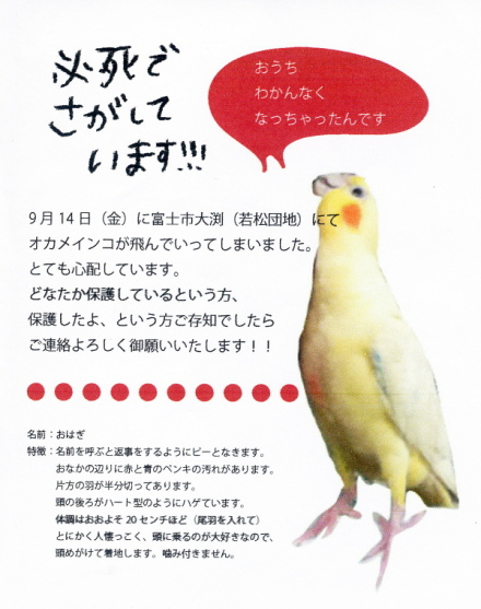 Yukashi_inko