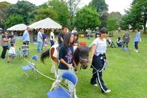 Iwa_akiichi2012g