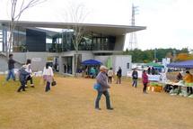 Plazafes2012a