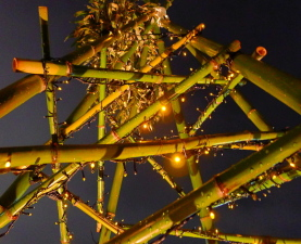 Bambootree02