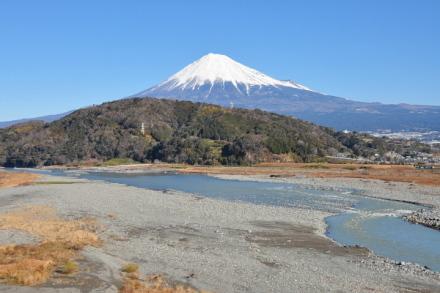 Hatsufuji2013a