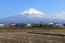 Uenokura2013a