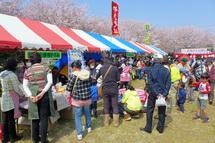Hiromi_sakurafes2013b