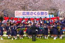 Hiromi_sakurafes2013g