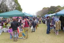 Iwamoto_haruichi2013b