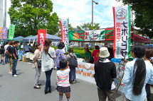 Fujisankizunafes02