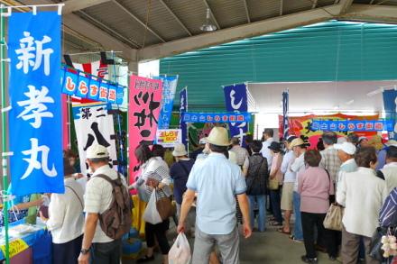 Shirasukaidofair2013c
