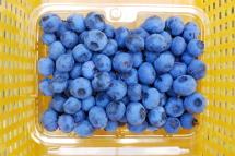 Blueberryhatsu04