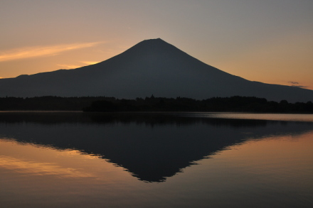 Tanukidia201308b