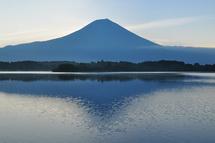 Tanukidia201308d