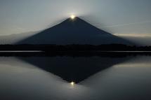 Tanukidia201308g
