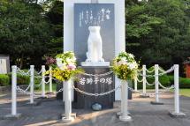 Wakajishi03
