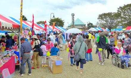 Fukushifes2013a
