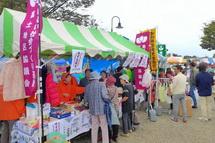 Fukushifes2013b