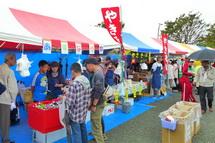 Fukushifes2013c