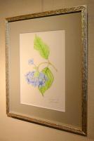 Botanique201401c