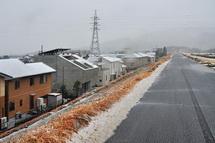 Snow20140208c