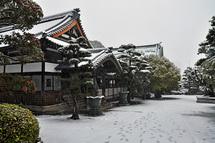 Snow20140208f