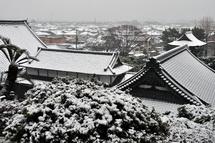 Snow20140208g