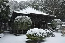 Snow20140208h