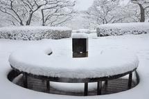Snow20140208l