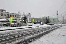 Snow20140208r