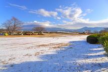 Snow20140209a