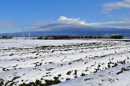 Snow20140209c