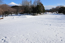 Snow20140209e