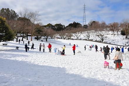 Snow20140209f