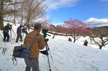 Snow20140209j