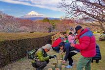 Tk_iwamoto2014a