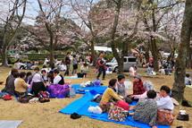 Hiromi_sakurafes2014e