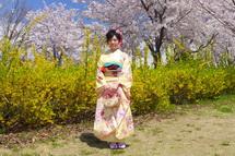 Takaoka_sakurafes2014lh