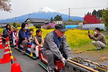 Gebazakurafes2014f
