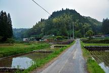 Minamizawa_hotaru2014a