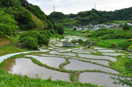 Sengamachi01