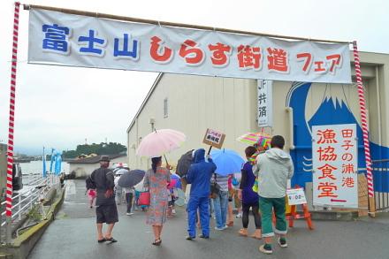 Shirakaifeir2014a