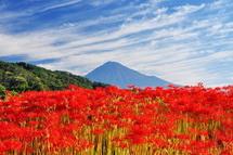 Fuji_higan2014e