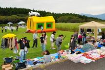 Susono_cosmos2014g