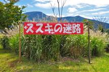 Susuki_meiro01