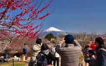 Iwamoto20150228c