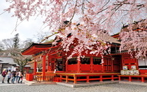 Sengen_shidare2015b