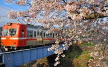 Sakura20150404t