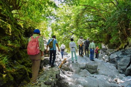 潤井川のヤスヶ淵を歩く